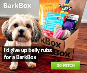 bark-box-2