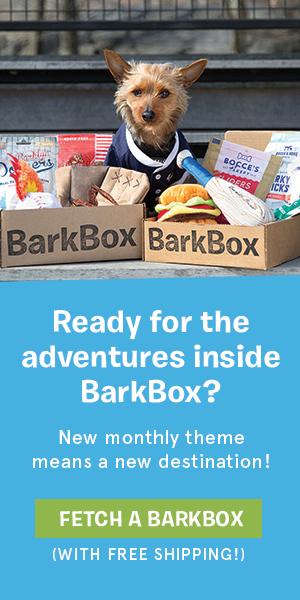 bark-box-3