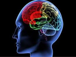 3 Boost Brain Health